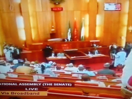 , Saraki Unveils Ministerial List On Live TV, Amaechi, Fashola, Lai Mohammed, Ngige, Included, Effiezy - Top Nigerian News & Entertainment Website