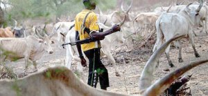 Soldiers arrest 92 armed herdsmen in Abuja