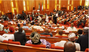 , Grazing bill for Herdsmen passes first reading at Senate, Effiezy - Top Nigerian News & Entertainment Website