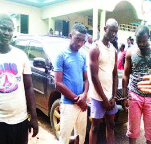 'I robbed to raise money to expand my poultry business' – Suspect