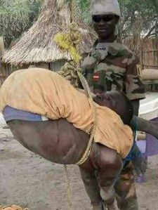 Soldier ties a Boko Haram suspect and lets him dangle from a tree