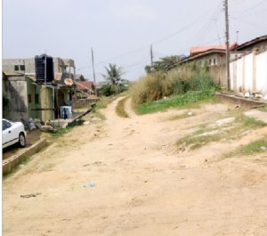 Police arrest woman for beating a 10-year-old girl to death in Lagos