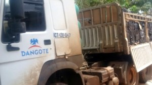 Dangote truck used for smuggling N47million contraband poultry into the country intercepted (Photos)