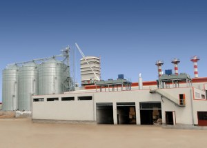 Largest edible oil refinery in Sub-saharan Africa launched in Ibadan.