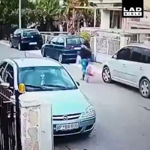 Stray dog saves woman from thief (Video)
