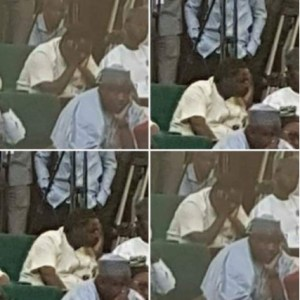 Special Adviser to President Buhari, Femi Adesina Sleeping During The Budget 2018 Presentation (Photos)