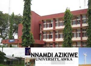 Over 40% of Nnamdi Azikiwe University staffs watch pornography at work – Vice Chancellor says