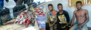 See this 3 Ghanaian Armed Robbers Caught By Security Operatives With Charms. (Photos)