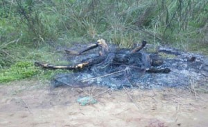 Notorious Thief Caught And Burnt In Akwa Ibom (Graphic Photos)