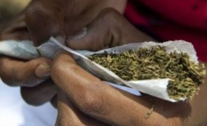 """Indian Hemp Is The """"New Rice"""", Now Served As Gift Item At Ceremonies In Onitsha"""