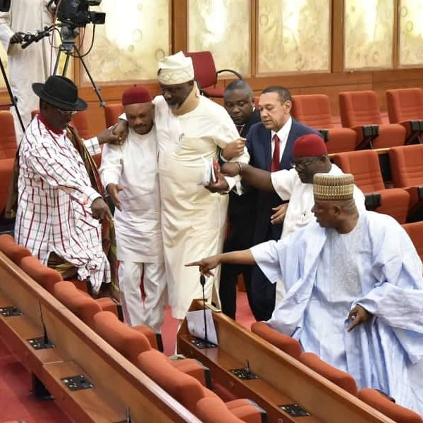 , Dino Melaye: I Changed My Seat At The Senate Because I Saw Lion, Tiger & Snakes On It, Effiezy - Top Nigerian News & Entertainment Website