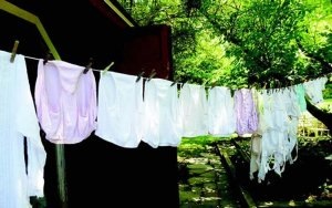 Anyone that steal panties will be charged with attempted murder – Police warns