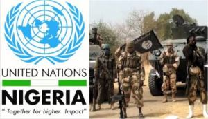 UN reacts to execution of aid workers by Boko Haram.