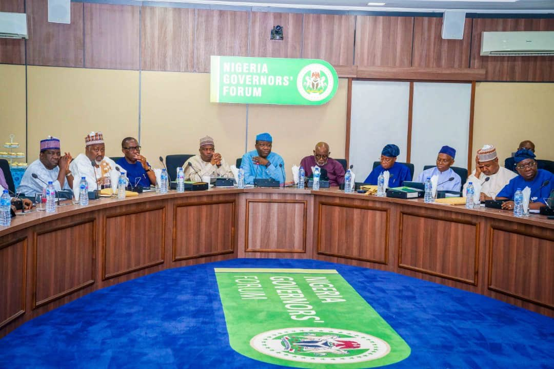 , Governors fault timing of SWAT formation, urge IGP to shelve plan, Effiezy - Top Nigerian News & Entertainment Website