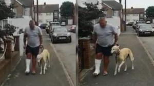 Injured dog owner spends £300 on X-Rays and vets for his limping dog only to learn he was only copying him out of sympathy (video)