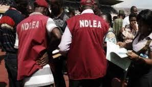 NDLEA intercepts N32bn cocaine at Lagos port, arrest clearing agents