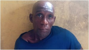 Police arrest man for shooting co-tenant in Ogun state