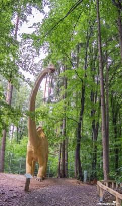 Dino Park, Rasnov