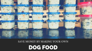 Learn how to make your own dog food. Save money and feed your pet a healthy diet with homemade dog food.