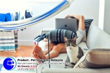 Pet Insurance Malaysia Johor Batu Pahat Agensi Pekerjaan Unilink Prospects SB Wisma V Cat Insurance Malaysia Dog Insurance Malaysia Johor Batu Pahat Your pet is part of your family Insure your pet today A10