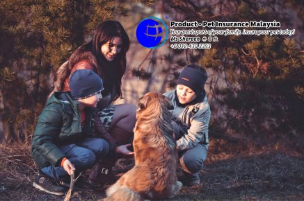 Pet Insurance Malaysia Johor Batu Pahat Agensi Pekerjaan Unilink Prospects SB Wisma V Cat Insurance Malaysia Dog Insurance Malaysia Johor Batu Pahat Your pet is part of your family Insure your pet today A20