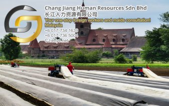 Chang Jiang Human Resources Johor Malaysia Foreign Worker Permit Passport Insurance Consultation Rehiring Workers and Maids EPA01-29