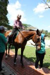 Unilink Group Company Trip 2018 April from Agensi Pekerjaan Unilink Prospects Sdn Bhd Horse Riding at Johor Bahru 60