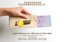 柔佛有执照的贷款公司 Lupin Resources Malaysia SDN BHD 您金钱资源的供应商 古来 柔佛 马来西亚 个人贷款 商业贷款 低利息抵押代款 经济 A01-77