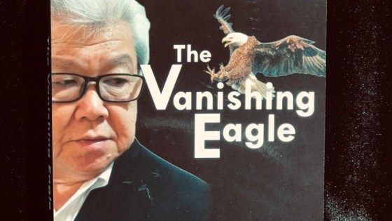 David Goh Memoir - The Vanishing Eagle - David Goh Book 02