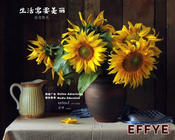 Effye Media 开办教育 峇株吧辖网路宣传媒体资料设计电脑班集体班或个人班 王家豪授课 Raymond Ong A07