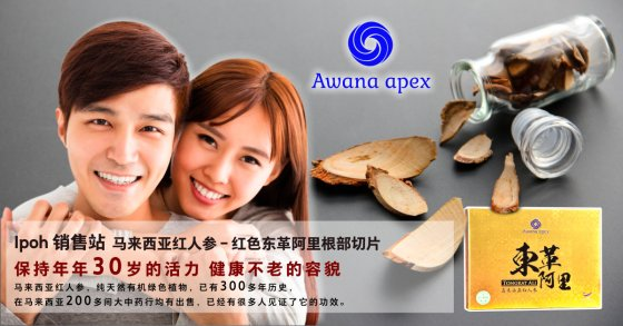 Ipoh 销售站 马来西亚红人参 红色东革阿里根部切片 Awana Apex 在马来西亚200多间大中药行均有出售 东革阿里 A01