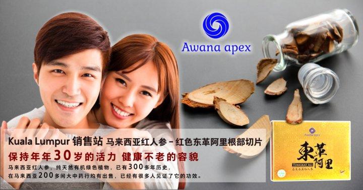 Kuala Lumpur 销售站 马来西亚红人参 红色东革阿里根部切片 Awana Apex 在马来西亚200多间大中药行均有出售 东革阿里 吉隆坡 A01