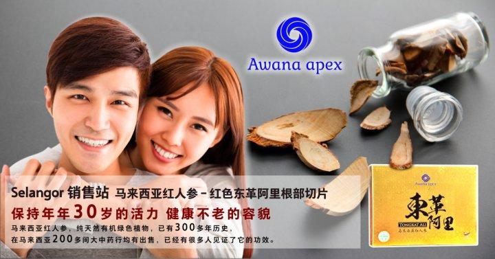 Selangor 销售站 马来西亚红人参 红色东革阿里根部切片 Awana Apex 在马来西亚200多间大中药行均有出售 东革阿里 雪兰莪 A01
