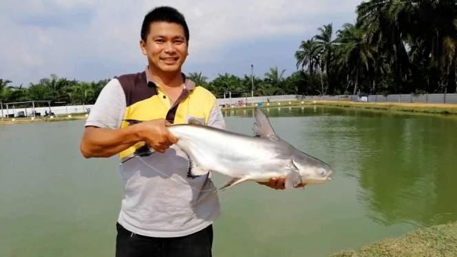 Kolam Memancing Simpang Sikon - Kolam Memancing Ikan Parit Raja Batu Pahat Johor Malaysia B12
