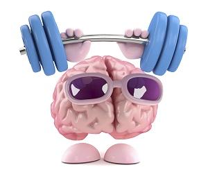 cerveau exercice