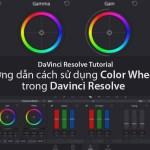 Hướng dẫn cách sử dụng Color Wheels trong Davinci Resolve
