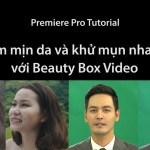 Làm mịn da và khử mụn nhanh với Beauty Box Trong Premiere Pro