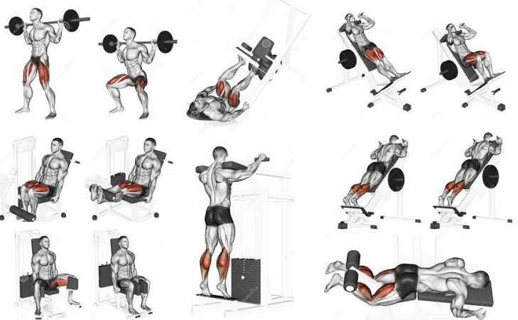 leg workouts plan