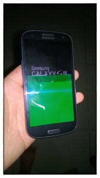 Samsung S3 Dead 2