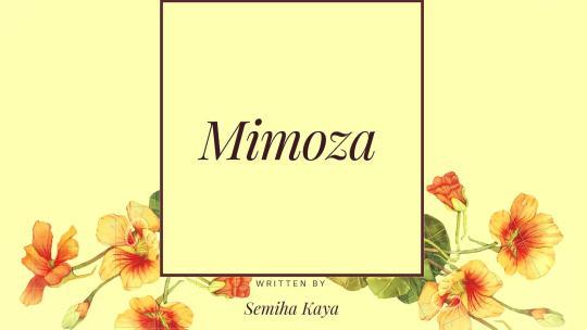 Mimoza – 3. Bölüm