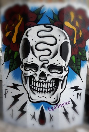Silent Sunday 24 - streetart - tête de mort