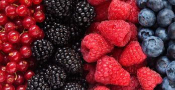 New Study Antioxidants causes cancer to spread fastrer