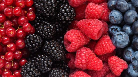 New Study Antioxidants causes cancer to spread faster