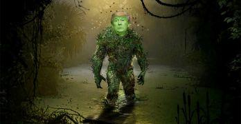 Donald Trump Swamp