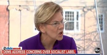 Elizabeth Warren Socialism Trap