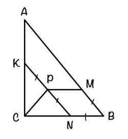 Прямоугольный треугольник Номер 16