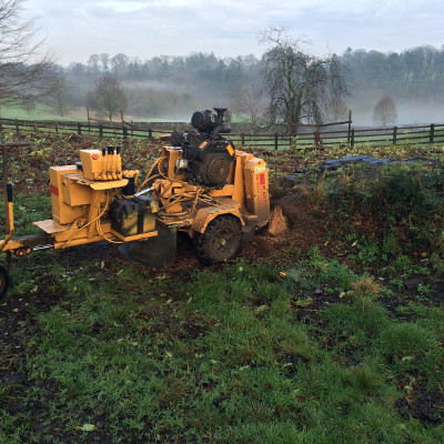 stump grinding ellesmere