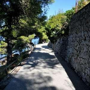 Cavtat Foreshore Walk The Path