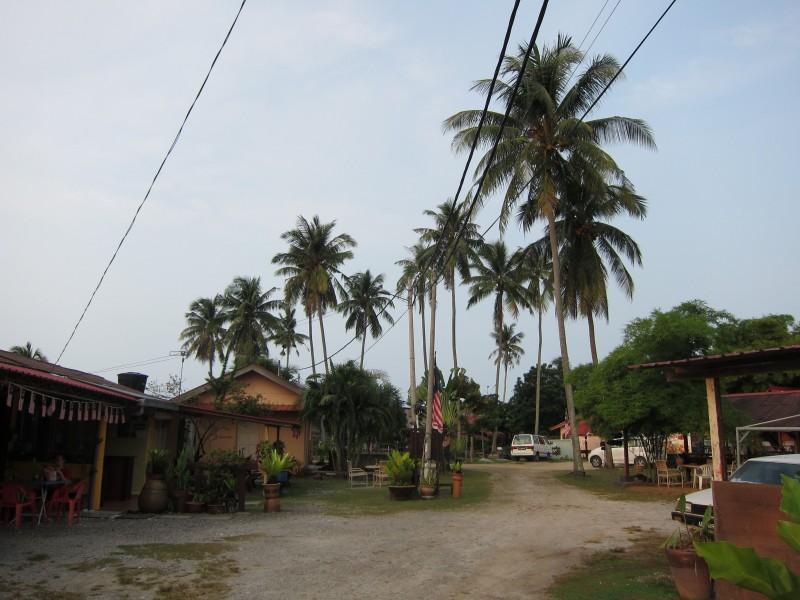 The kampung we stayed at in Langkawi