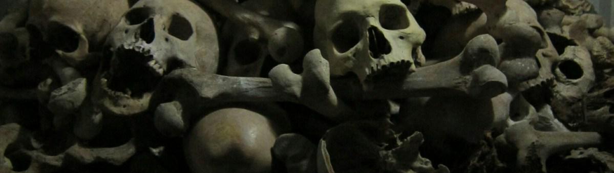 Bats, Orphans, Genocide